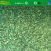IQF frozen chive cut with good taste