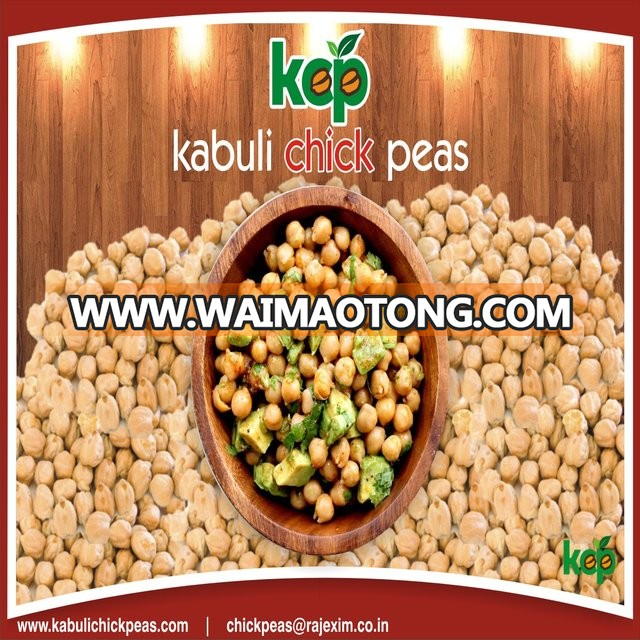 Indian 12mm Kabuli Chick Peas Exporters